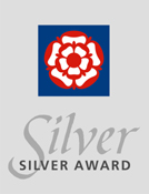 Silver Award for Excellence